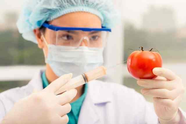 ¿Qué son los Alimentos transgénicos y cómo saber si es sano consumirlos?