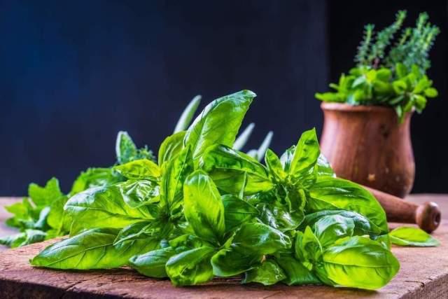 6 Hierbas de olor para cocinar platillos más saludables y sabrosos