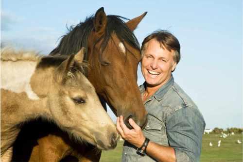 Cómo el coaching asistido por caballos te ayuda a desarrollar tu liderazgo