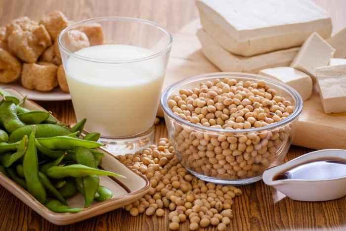 Soya: la alternativa a la carne rica en nutrimentos y cómo consumirla