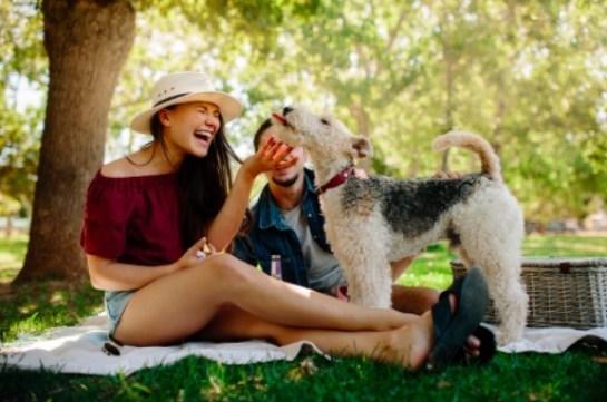 Organizar días de campo es una excelente opción para relajarte durante las vacaciones de verano