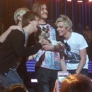R5 With Grumpy Cat