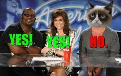american idol grumpy cat
