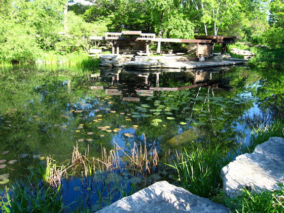 The Alfred Caldwell Lily Pond in Chicago's Lincoln Park in spring