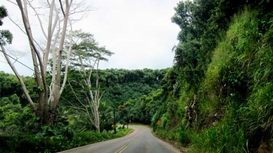 Each mile was wilder (the Big Island, Hawaii), © 2014 Susan Barsy
