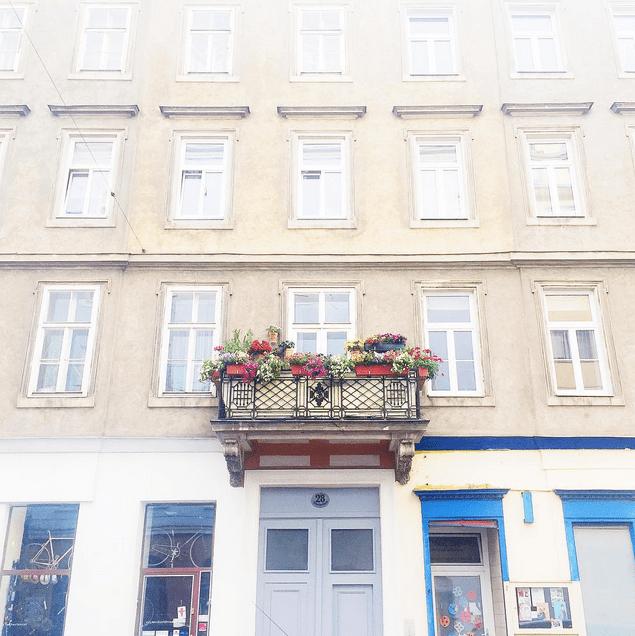 balcony flowers vienna austria
