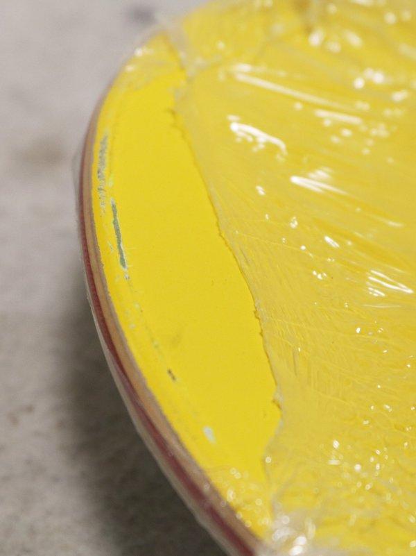 Simpson skateboard damage