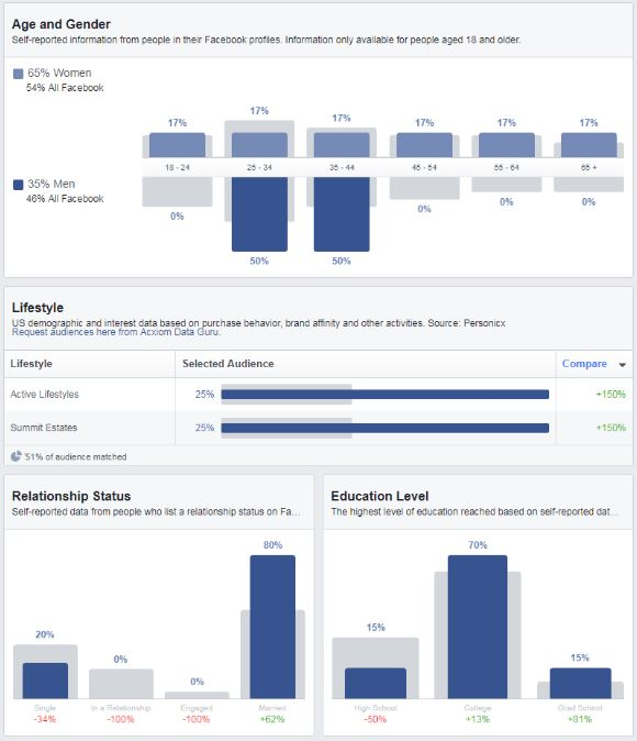 facebook audience insights, target market, ans