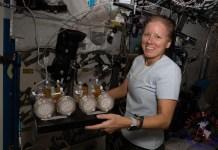Astronauta estadounidense Shannon Walker