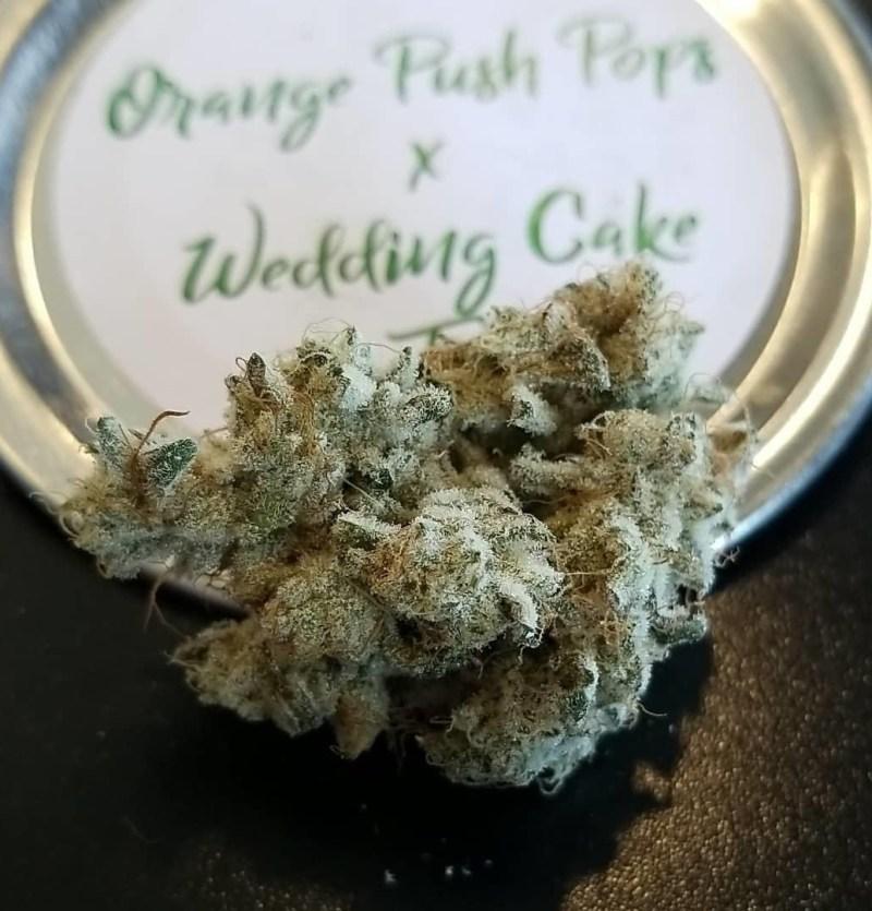 THC Orange push Pop Cannbis
