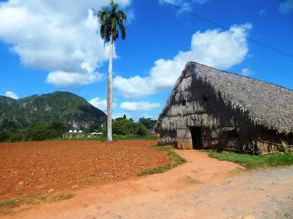 Cuba destination, Vinales Valley