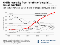 This rise in mortality, documented by Brookings scholars in 2017, highlights the severity of the U.S. healthcare crisis.