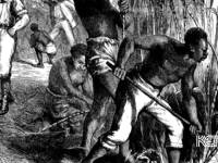 An image of slavery in Kentucky. Under Hamilton's system, this oppression would end.