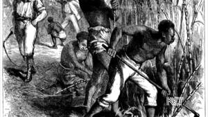 The Constitution and Slavery: The Missing Economic Dimension