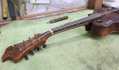 bluett mandolin 2017 1