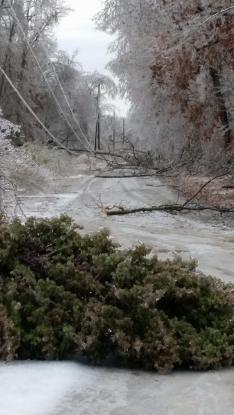 Ice Storm: Sparta (White County) [Photo Credit: Amber Hall]