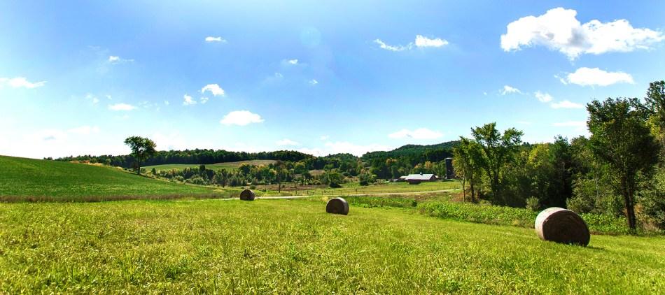 about-farm
