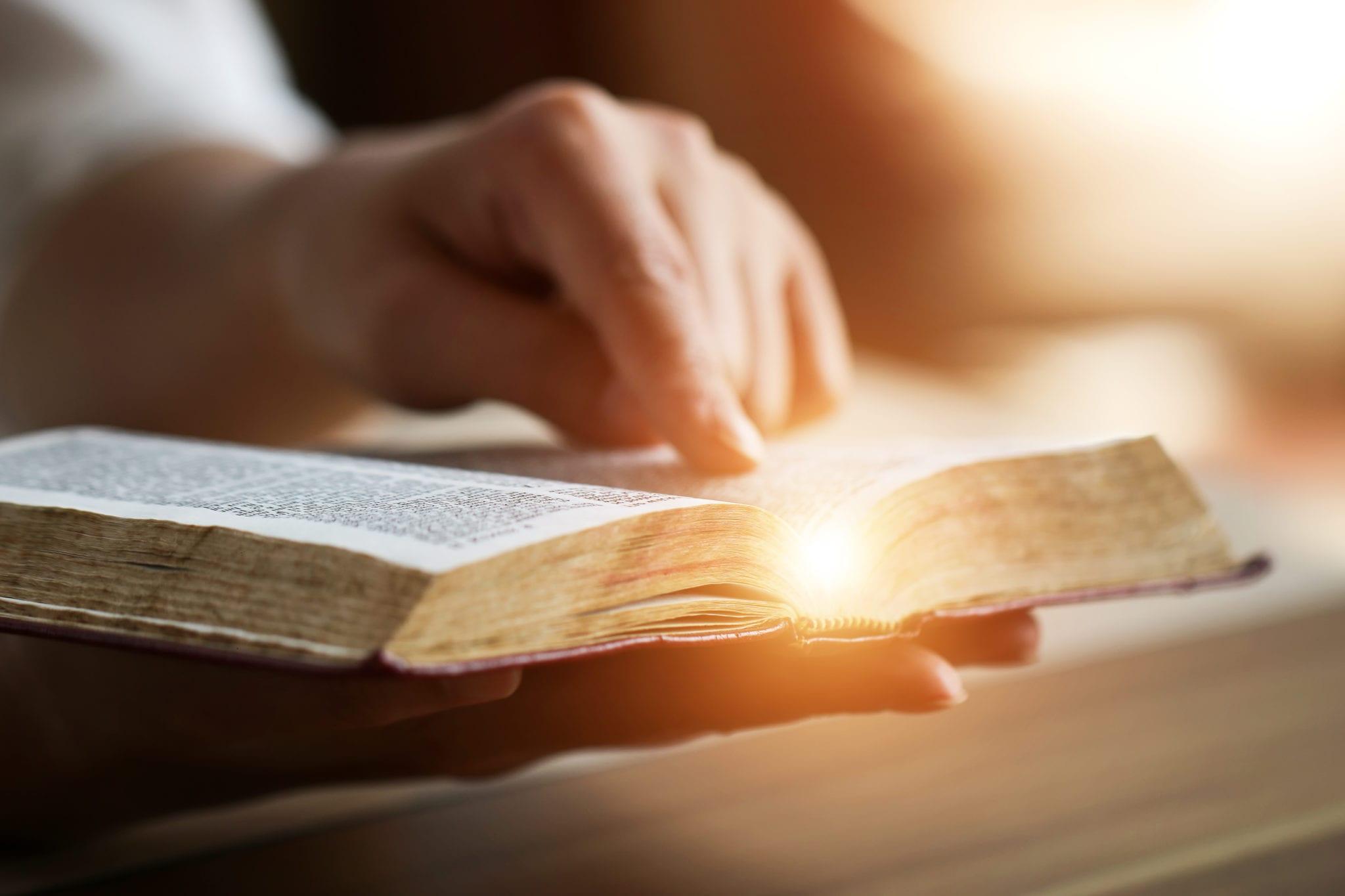 Good News Bible Online Pdf