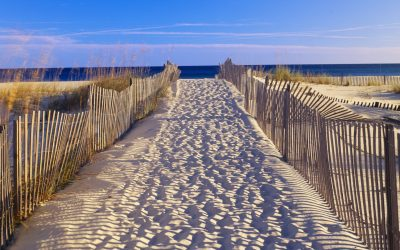 Extend The Experience: Gulf Islands National Seashore