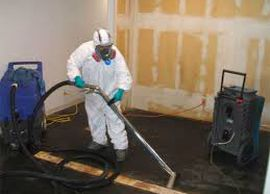 Sewer Damage Cleanup