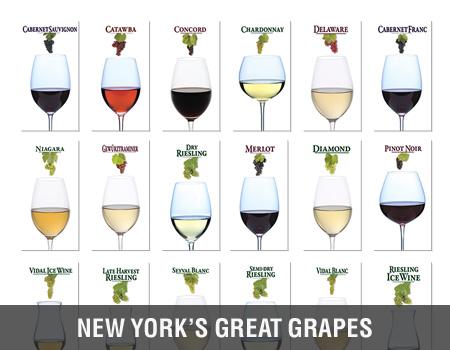 NY_Grapes