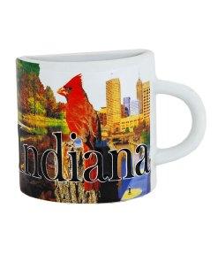 Indiana Mug Magnet