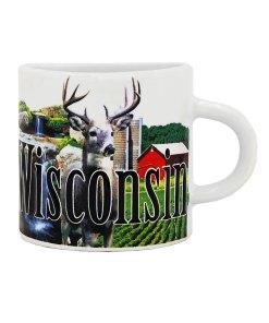 Wisconsin Mug Magnet