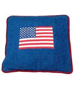 Pillow with USA Flag in Center