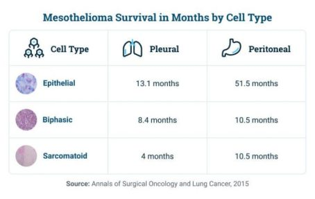 mesothelioma survival by cell type 672x0 c default