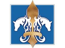 Dreamco Arabians
