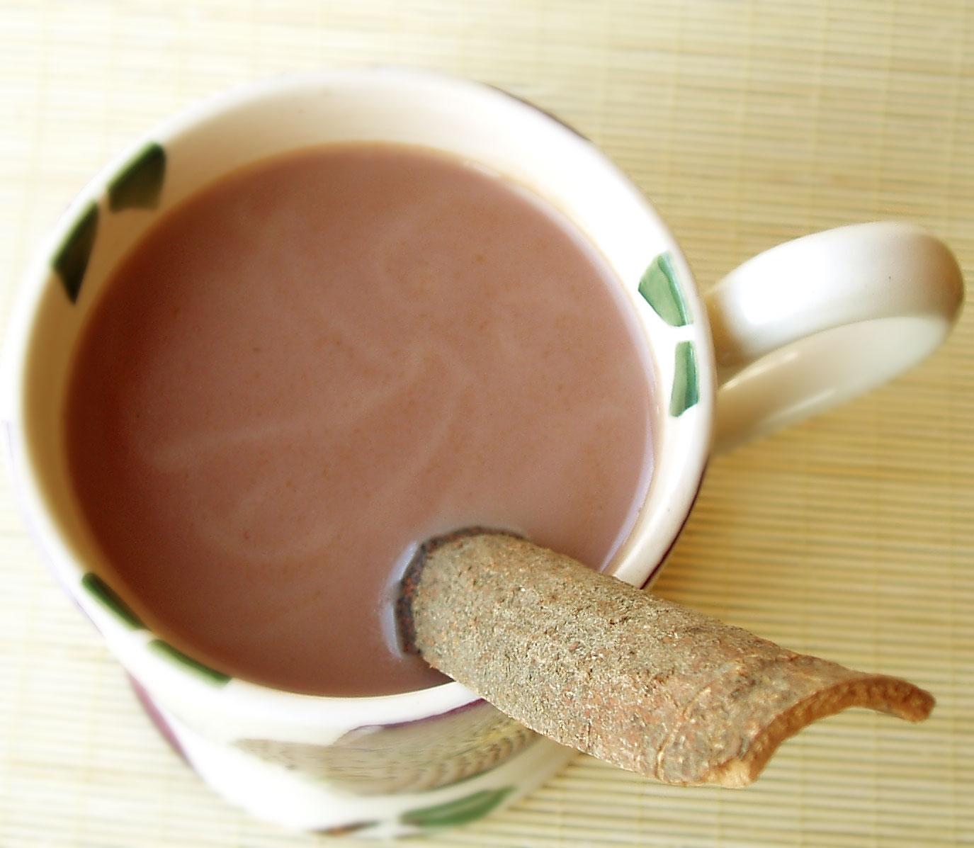 hot cinnamon chocolate