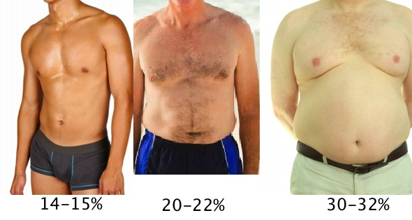 high body fat percentages for men