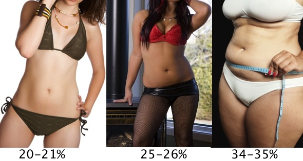 high body fat percentages for women