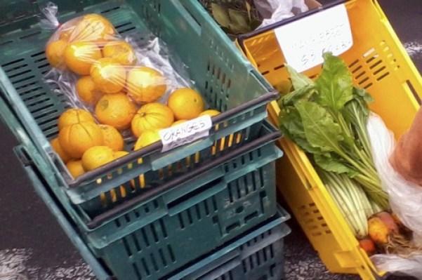 Parnell farmers market manglebeet