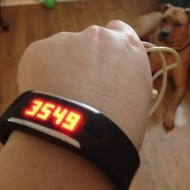 Counting Steps With The Polar Loop