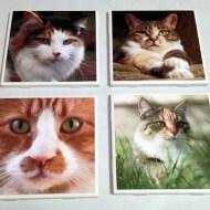 DIY Photo Ceramic Tile Coaster Set Tutorial