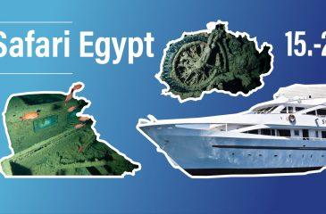 Safari Egypt 2021