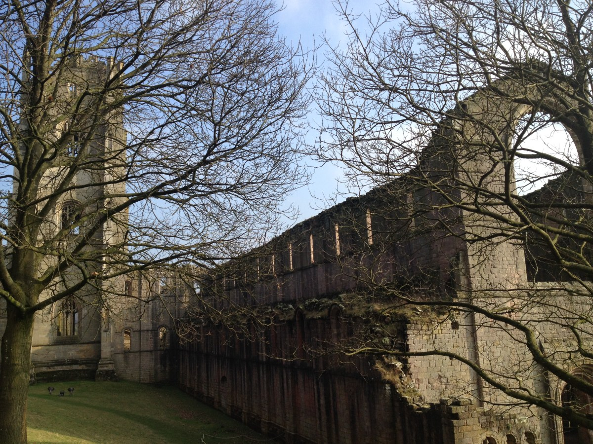 Valentine's Day 2017 feat. Fountains Abbey & Studley Royal Water Garden