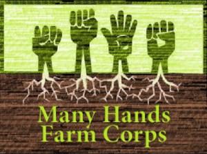 Logo for Many Hands CSA