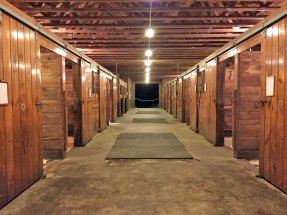 Photo of the boarding stables at Amethyst Farm