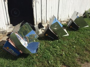 Photo of three Solar Cookers (plus dog)