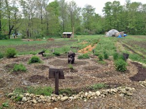 Photo of Herb Garden at Many Hands CSA