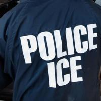 Friday Open Thread | ICE Agents forcibly removed a woman awaiting emergency surgery to a detention center.