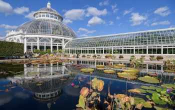Ботанический сад США. U.S. Botanic Garden