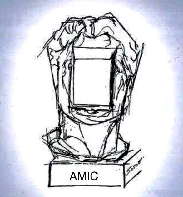 AMIC Nice