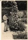Simó Dot, roserar de L'Haÿ-les-Roses, década anys 1950. Foto: arxiu família Dot