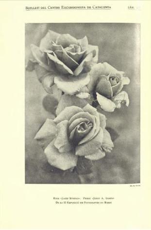foto-expo-amics-1933-cec