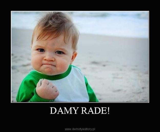damy_rade
