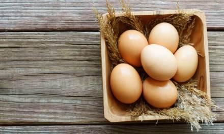 Afinal, você deve evitar os ovos para manter a saúde?
