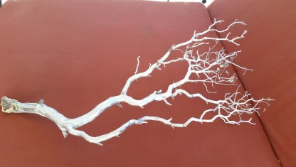 branches-halloween-decor-amigas4all-resized